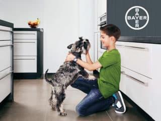Bayer - Spoty Reklamowe
